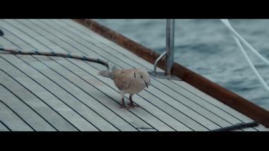 Adrift (70)