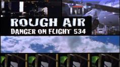 roughairflight534 (2)