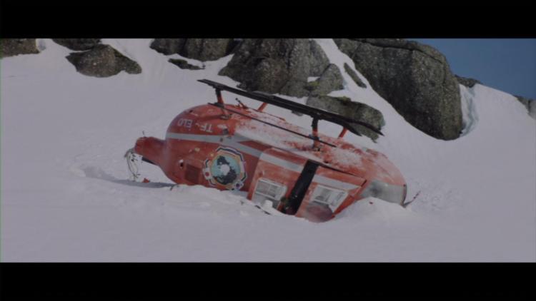 Arctic (17)