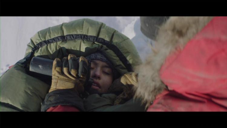 Arctic (30)