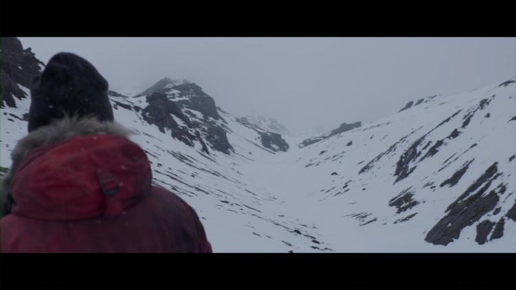 Arctic (35)